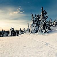 Wallpaper HD iarna