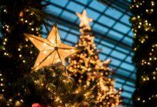 Wallpaper de Crăciun – Galerie cu Brăduți, Cadouri și Decorațiuni